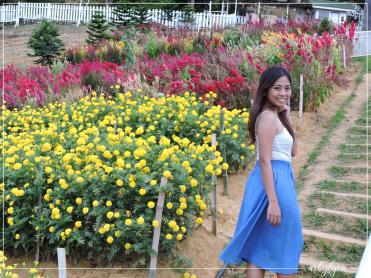 Sirao Garden-1