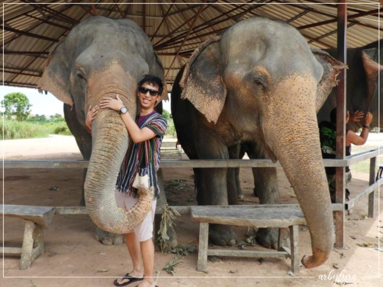 elephant-sanctuary-4